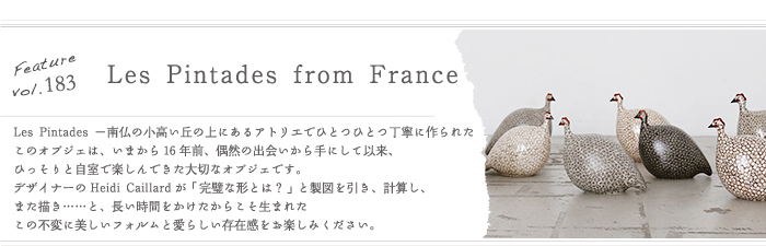 Feature,183「Les Pintades from France」